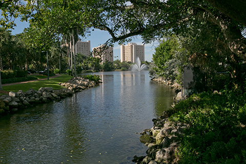 Lake Osceola at the University of Miami Coral Gables Campus